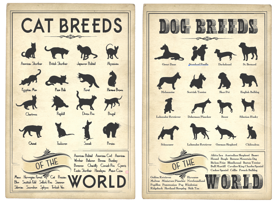 Cat and Dog Breed Posters